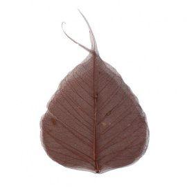 Скелетированные листочки, красно-коричневый, упаковка 10шт, 60гр, 63803956, GLOREX Россия.