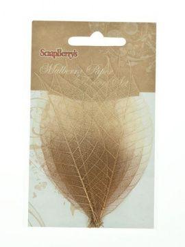 Скелетированные листочки из каучукового дерева, медно-коричневый, упаковка 8шт, SCB300506, SCRAPBERRY'S Россия.
