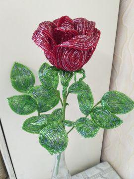 Роза из чешской рубки Красная роза в Stranamasterov.by Беларусь.