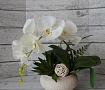 Интерьерная композиция Белая орхидея в Stranamasterov.by