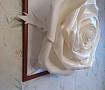 Картина 3D Роза в Stranamasterov.by