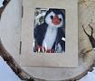 Валяная брошь Пингвин в Stranamasterov.by