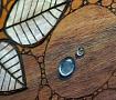 Картина на дереве 50х50см Веточки в Stranamasterov.by